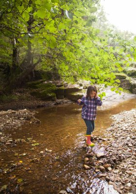 little girl playing in a stream on a hike