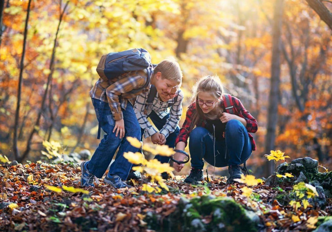 Three siblings on a fall hike